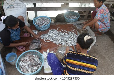 Pekalongan / Indonesia - March 20, 2019: activities in fishing villages, cleaning fish for the process of making salted fish. wonokerto, pekalongan