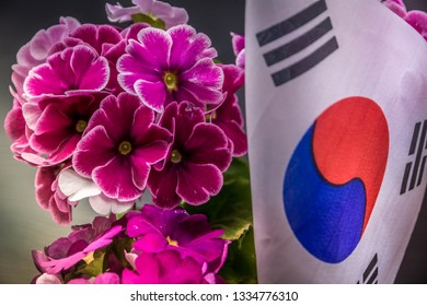 Pelargonium, purple flowers of pelargonium with South Korea flag