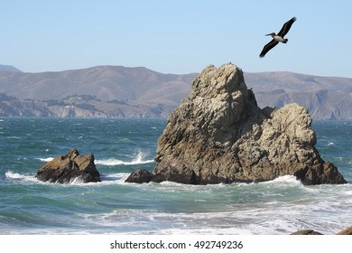A pelican flying over the ocean in northern California.