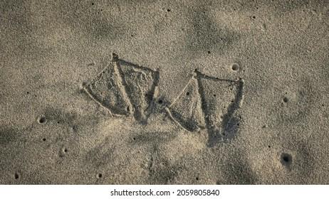 Pelican Seagull Bird Footprints in Sand on Sunny Beach at Sunrise Sunset