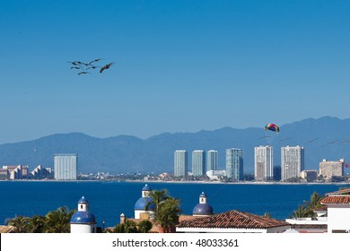 Pelicanos and parachute flying over the Banderas Bay. Puerto Vallarta, Mexico