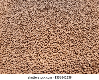 pellets feed fish, it is an artificial food for cultured the  economic fish drying on farm