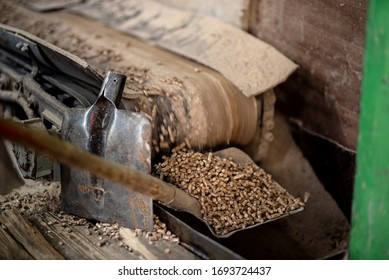 Pellets fly out of the machine. Production of pellets.