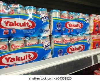 PENANG, MALAYSIA - MARCH 18, 2017: Yakult is a cultured milk drink made by fermenting skim milk with billions of live probiotic cultures to help maintain a healthy digestive system.