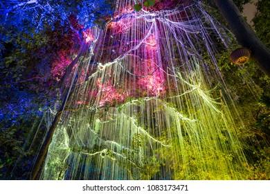 Penang Malaysia - November 03, 2017, Fluorescent light under a dark tree in Avatar garden, Penang, Malaysia
