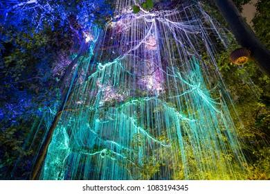 Penang Malaysia - November 03, 2017, Fluorescent light at the tree in Avatar garden, Penang, Malaysia