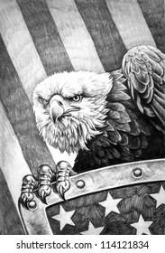 A pencil drawing of the American bald eagle with a shield on the flag of the United States of America in the background.