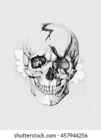 Pencil illustration, hand graphic - Skull  with the scars