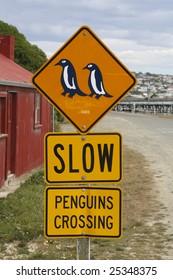 Penguin Crossing
