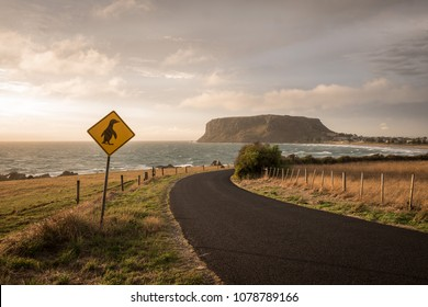 Penguin crossing sign, The Nut, Tasmania