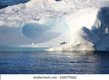 Penguins standing on a huge iceberg. Cavernous blue ice cave. Antarctica Landscape