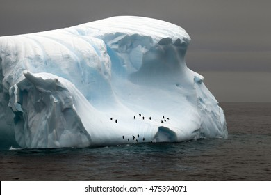 Penguins trying to jump to the iceberg in the Drake passage