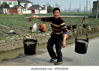 Pengzhou, China - January 24, 2010:  Farmer carrying two pails of water suspended from a shoulder yokes walking along a country road