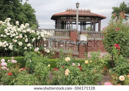 Peninsula Park Rose Garden Portland USA Stock Photo (Edit Now ...
