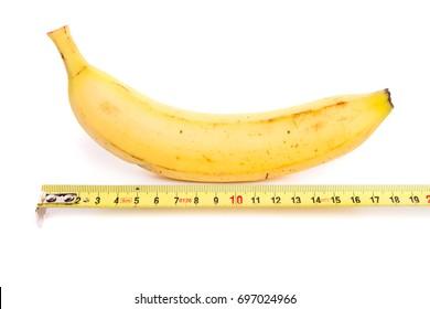 medium sort penis