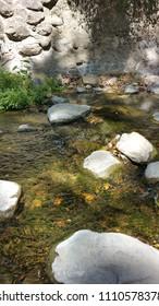Penitencia Creek in Alum Rock Park, San Jose, California