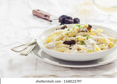 Penne alla norcina - Italian  pasta with  cream sauce and black truffle in white plate, free text space.