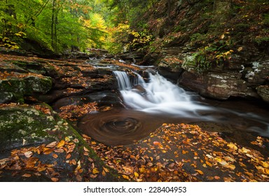 Pennsylvania Ricketts Glen State Park Allegheny Mountain Waterfall Autumn Scenic