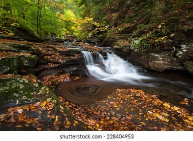 Pennsylvania Ricketts Glen State Park Allegheny Mountain Waterfall Autumn Scenic