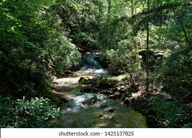 Pennsylvania waterfall located in the Allegheny Mountains in Western Pennsylvania. Stream, majestic, beautiful trail.