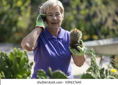 Pensioner is working in the garden with flowers.