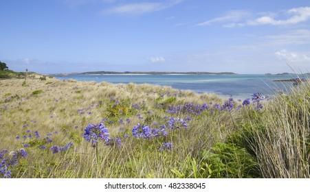 Pentle Bay, Tresco, Isles of Scilly, England