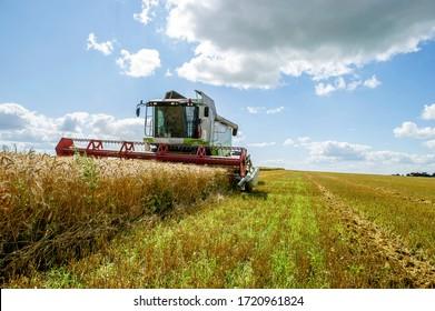 Penza region, Russia, August 09, 2017. Seasonal harvesting in the Penza region, Russia.