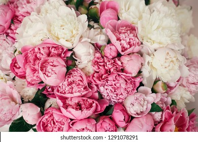 Peonies wallpaper pattern. Big stylish pink and white peony bouquet close up. Happy mothers day. Valentines day. Aroma scent concept. International Womens Day.