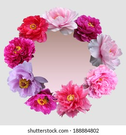peony flowers background