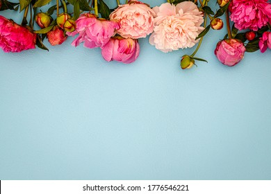 Peony flowers on blue paper background, floral frame with copy space, text place, flat lay, top view. Valentine background. Floral frame with Peony texture. Mother day card