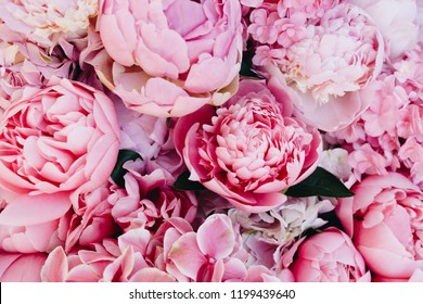 Peony and hydrangea pink flowers background