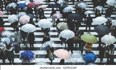 People across the crosswalk on a rainy day