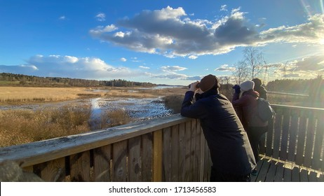 People birdwatching with binoculars in a tower