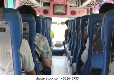 people in the Bus tour