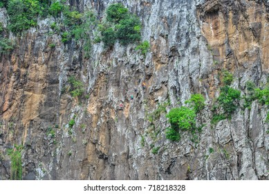 People climbing a cliff, Reunion Island, France
