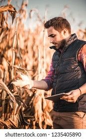 People concept - agronomist portrait of man using tablet in agriculture harvest