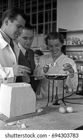 People cooking eggs over Bunsen burner in laboratory