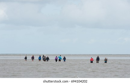 People crossing water during an intertidal tour (wadlopen) on the Waddensea in the Netherlands