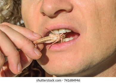 people eating a bugs and insects concept. new alternative food lifestyle and future protein source. Disgusting and bizarre cuisine.
