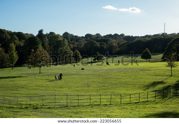 People enjoy the beautiful weather in Hampstead Heath in London in the late afternoon.