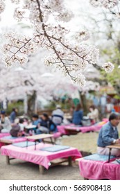 People enjoy spring season by partaking in nighttime Hanami festivals in Maruyama Park. The annual festivals coincide with the seasonal blooming of the cherry blossoms.