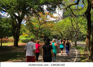People exercising on the track of Jaqueira Park., Recife, Pernambuco, Brazil. 2019/01/13.