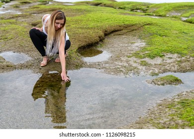 People exploring the intertidal zone of Vancouver, British Columbia. Those rocks are underwater at high tide, and out of water at low tide and revealing a unique biome.