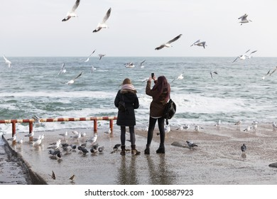 People feed a flock of seagulls on the sea shore in winter. A flock of sea gulls on the sea close-up. Gulls on the sea winter beach. Seagulls in flight catch food from people's hands