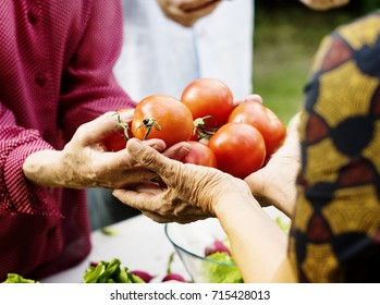 People giving a fresh tomato to another