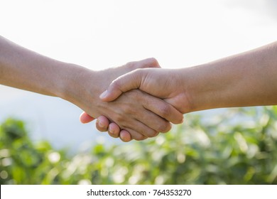 People handshake of hands showing unity and greetings and success