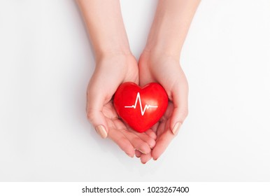 People health concept - close up of woman's cupped hands showing red heart with heart beat.