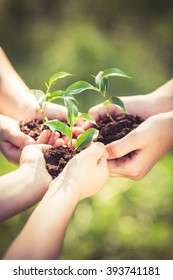People holding young plant in hands against green spring background. Earth day ecology holiday concept