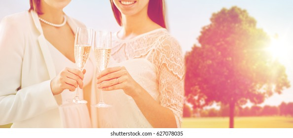 people, homosexuality, same-sex marriage, celebration and love concept - close up of happy married lesbian couple holding and clinking champagne glasses over oak tree at summer park background