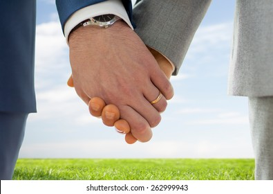people, homosexuality, same-sex marriage and love concept - close up of happy male gay couple holding hands with wedding rings on over blue sky and grass background